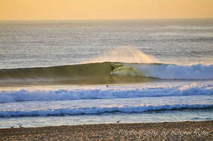 Surfing Maroubra Beach