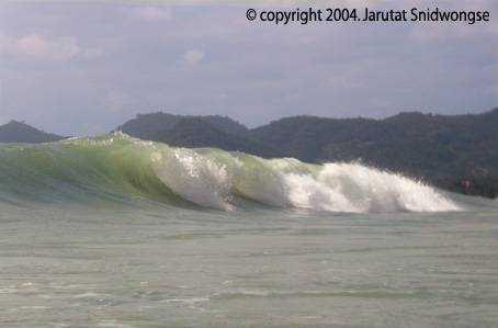 Samui-2004-great-wave!!