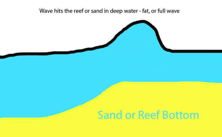 High Tide Waves
