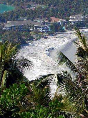 phi-phi-tsunami