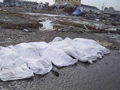 tsunami victims